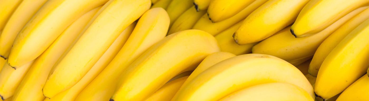 fruidor-banane-une